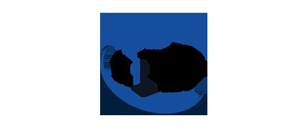 WorldBridge Homes Logo